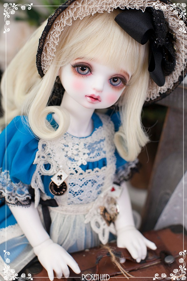 Limited : 포포 - Alice in wonderland