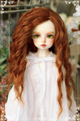 Luna (New HRF - Brown)