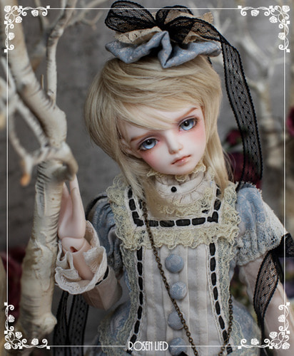 Wednesday's Child Limited Arcas - Alice (ver. boy)