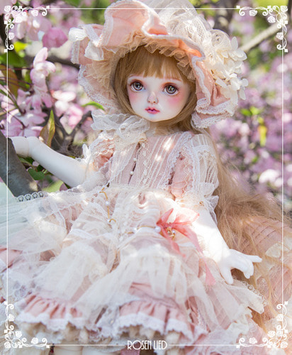 Holiday's child limited Ribbon (fairy ver.) - spring garden ver.1
