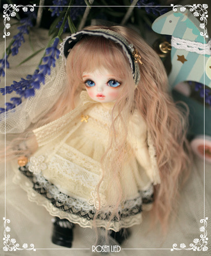 Monday's Child Limited Ginger - for 8th Anniversary